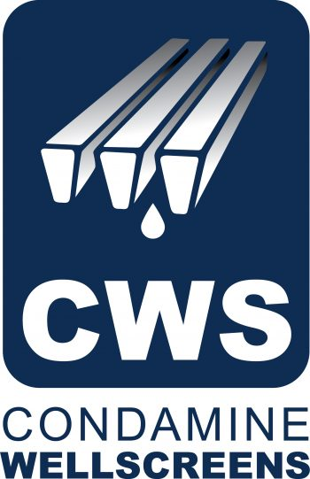 CWS + text Logo V P295 C